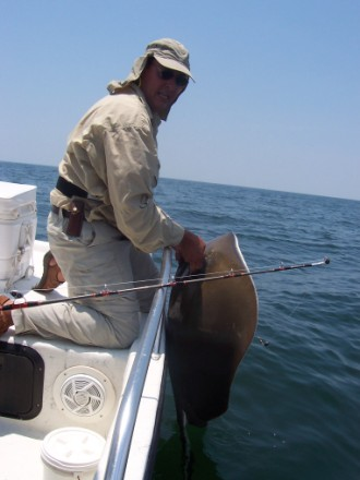 80 pound Sting Ray safely released