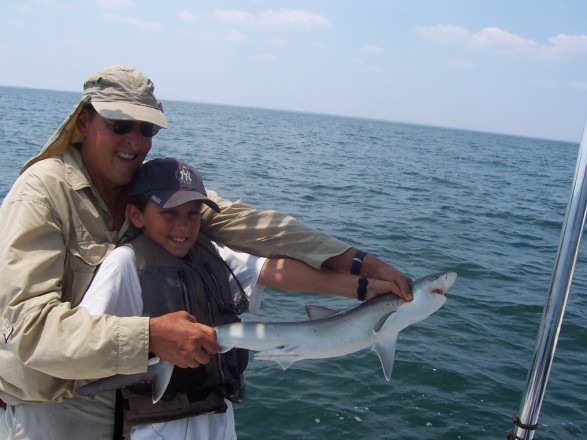 Ty's black tip shark safely released